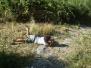 2007.08-LC vdc-cecciola-campo-di-zona-ii-parte