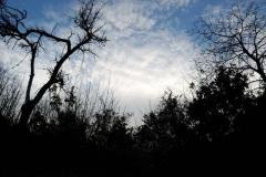 campo-invernale-2011-12-26_15-44-08